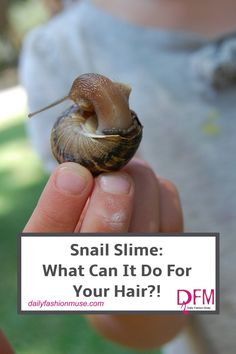 Snail essence in skin and hair care products is a phenomenon sweeping the nation. Kenra has added it to their hair care line. What can it do? Click to read.