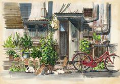Konachan.com - 171360 animal bicycle cat leaves original scenic yokoya.jpg (1200×848)