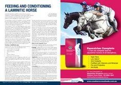 Feeding and Conditioning a Laminitic horse