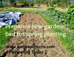 Prepare a new garden bed for spring planting now. Tips for organic natural fertilizer.