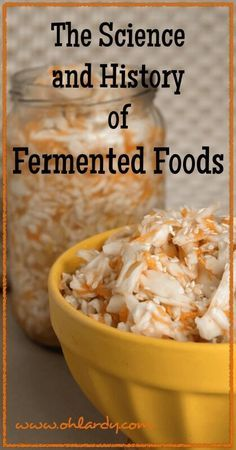 The Science and History of Fermented Food - www.ohlardy.com