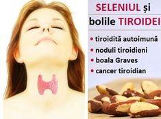 Legătura dintre SELENIU și afecțiunile glandei TIROIDE Aloe Vera For Face, Hypothyroidism, Good To Know, Natural Remedies, Food To Make, Health Tips, Metabolism, Facial, Cancer