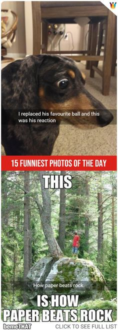 15 Super Funny Pictures of the Day #picoftheday #funnypictures #funnypic #bemethat #humor #latest #lol