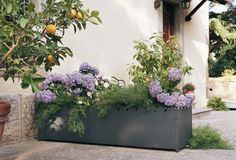 Kabin Long Outdoor Planters by Serralunga. A reinterpretation of the traditional cache-pot, with reference to the linearity of eastern-inspired containers. This flower box by Luisa Bocchietto is called Kabin and Kabin means cache-pot in Japanese.