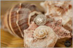 Wedding Ring - Boston wedding photographer#bostonindianweddingphotographer #bostonweddingphotography