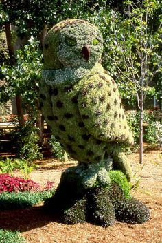 Topiary owl.. Wow...drool...take my money