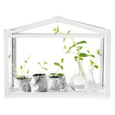 IKEA - SOCKER, Greenhouse, indoor/outdoor white, Provides a good environment for seeds to sprout and plants to grow. Indoor Outdoor, Outdoor Greenhouse, Greenhouse Effect, Small Greenhouse, Greenhouse Ideas, Portable Greenhouse, Greenhouse Gardening, Homemade Greenhouse, Dome Greenhouse