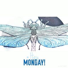 The #blue #dragonfly and #monday :) #agakubish #coloringbook #colour #kolorowanka #kolorowankidladorosłych #illustration  #graphic #graphicdesign #design #ink #tattoodesign #winds #art #artwork #walldecor #decoration #poster #doodle #sketch #handdrawn #sakuraofamerica