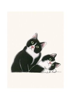 Two cats Cat Illustration - Tuxedo Cat Print - Kitten Art - 4 for 3 SALE - Didier and Leon - X animal portrait I Love Cats, Crazy Cats, Cool Cats, Image Chat, Gatos Cats, Matou, Cat Wall, White Cats, Cat Drawing