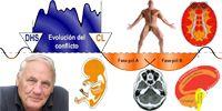 Nueva Medicina Germanica Hamer NMG Leyes Biologicas