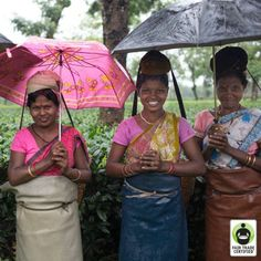 Remember: Behind every cup of #tea, there is a person. Will you treat them fairly? #FairTrade #womensempowerment #women