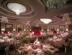 Wedding & Celebrations