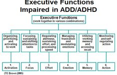 The Brown Model of ADD/ADHD   Brown ADHD Clinic   United States
