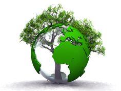 durable | ... durable du gouvernement actuel, nous avons eu quelques informations