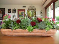 Love succulents :)