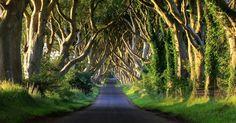 """Outras dez locações espalhadas pelo país colocam os turistas em Westeros, o continente dividido pelos Sete Reinos. Um dos locais mais bonitos é conhecido como """"The Dark Hedges"""", uma estrada de terra cercada por árvores retorcidas. Na ficção, ela vira a Estrada do Rei, que liga o Castelo Negro e a Muralha até a capital. Com árvores plantadas no século 18, este é um dos cenários naturais mais fotografados da Irlanda do Norte"""