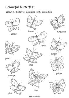 In English - Värinautit Free Coloring Pictures, Color Activities, Primary School, Projects For Kids, Coloring Pages, Butterfly, English, Education, Ideas