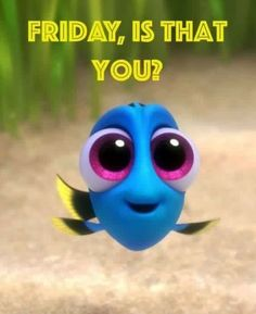 Finding dory is a great film. if you have seen finding nemo you should definitly see this. i highly reccommend this. Disney Cartoons, Disney Pixar, Frozen Disney, Disney Memes, Disney Characters, Its Friday Quotes, Friday Humor, Weekend Quotes, Wallpaper Iphone Disney