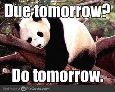 not my philosophy, but it's a procrastinating panda, and that's cute.