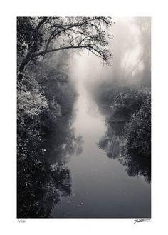 Misty Solitude Giclee Print