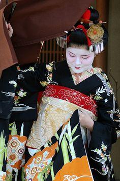 Maiko (apprentice of Geisha)