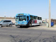 MCI Classic  Saskatoon  Transit  System