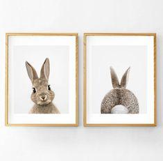 Rabbit Print Rabbit Tail Print Nursery Wall Art Printable
