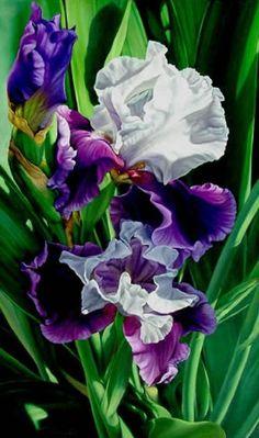 Brenda Semanick.      Watercolor