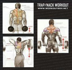 Trap workout