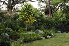 Nursery Lighting, Sticks And Stones, Design Awards, Garden Plants, Landscape Design, Spotlight, Exotic, Gardens, Instagram