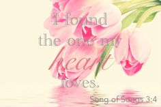 I found the one my heart loves. -Song of Solomon Jesus Scriptures, Bible Verses, I Need You Love, My Love, Rejoice And Be Glad, Bride Of Christ, Faith Over Fear, Rose Of Sharon, The Kingdom Of God