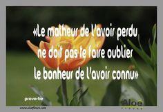 Citation Poème Deuil«Le Malheur De L'avoir Perdu Ne Doit Pas Te Faire Oublier Le Bonheur De L'avoir Connu»