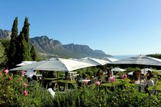 The Rumbullion offers great views, tapas, craft beer and sundowners in Cape Town, South Africa Cape Town South Africa, Round House, Outdoor Settings, Restaurants, Africa Travel, Great View, Far Away, Trip Planning, Night Life