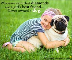 Nothing can replace the unbound friendship that you share with your dog.