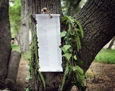 Following the Robin Hood theme, seating assignments for the reception were listed on a parchment scroll affixed to a tree by an arrow. #seatingassignment Photography: Lucky Love Photography. Read More: http://www.insideweddings.com/weddings/rustic-inspirational-wedding-shoot-in-a-forest-with-woodsy-details/661/