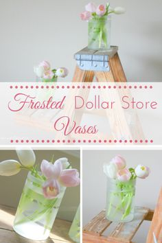 DIY Frosted Dollar S
