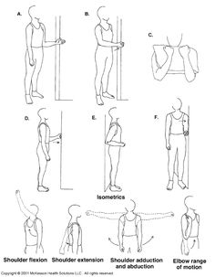 23 Best Physiotherapy Exercises For Lower Back Pain images