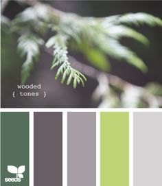 wooded tones - add the light green to the bedroom walls