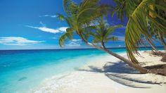 Hay buenas razones para que cada año Playa del Carmen reciba más de dos millones de visitantes al año, principalmente norteamericanos y europeos. Estos son los 20 principales motivos para ir a esta fascinante ciudad