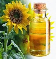 Medicinal Plants and Their Uses: Sunflower
