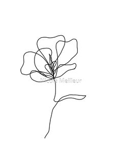 Simple Flowers To Draw, Simple Flower Drawing, Simple Flower Tattoo, Flower Art Drawing, Simple Line Drawings, Floral Drawing, Violet Flower Tattoos, Violet Tattoo, Small Flower Drawings