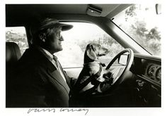 David Hockney and Stanley  Here is a wonderful photograph of Pop Artist David Hockney driving with his beloved dog Stanley in the late 1980s.   Photographed by Ray Charles White.