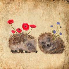Art card Hedgehog s story Hedgehog Art, Happy Hedgehog, Cute Hedgehog, Hedgehog Tattoo, Art And Illustration, Hedgehog Illustration, Art Carte, You Draw, Art Plastique