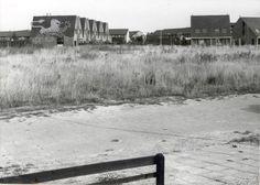 bostulp 1983 Historisch Centrum Leeuwarden - Beeldbank Leeuwarden