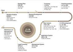 CI/BI Process