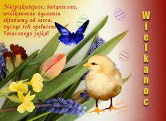 Wielkanoc: Animowane kartki wielkanocne z życzeniami Google, Moving Pictures, Easter Activities