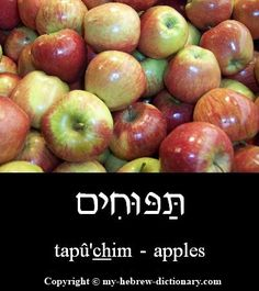 "How to say ""Apples"" in Hebrew.  Click to hear it pronounced by an Israeli: http://www.my-hebrew-dictionary.com/apples.php"