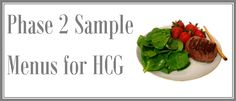 DIY HCG provides everything you need for a healthy HCG diet plan. Our 'do it yourself' approach is based on the original HCG Diet manuscript. Phase 2 Hcg Recipes, Sample Menu, Hcg Diet, Food Lists, Choices, Breakfast Recipes, Lose Weight, Healthy Eating, Low Carb