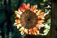 andy goldsworthy leaf works - Bing Images