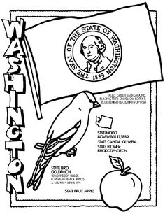 Washington coloring page--one for all 50 states. Don't know if I'll ever use them, but they sure are neat!